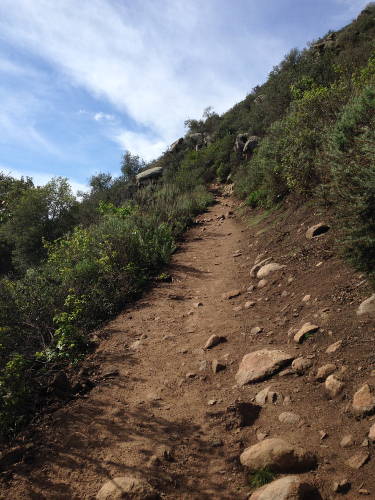 A smoother section of the trail with less rocks